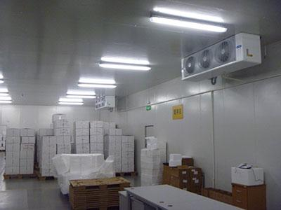 Medical Cold Storage warehouse for Hospital